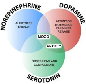 gaba dopamine gaba actions