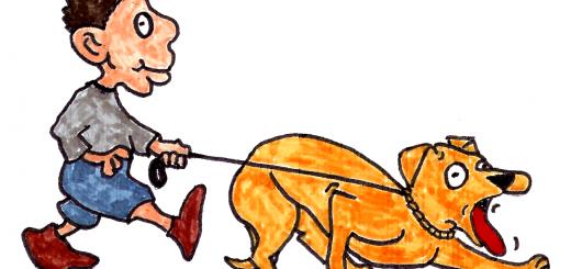 dog on prong collar rhs human (1)