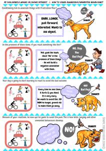 Dog Training Tips Food Aggression